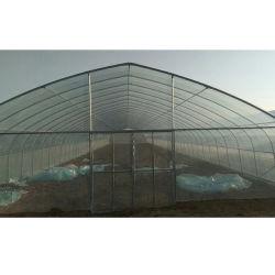 아치 솔라 플라스틱 시트 꽃과 채소를 위한 농업용 온실