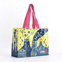 De PP personalizados tecidos laminado Ecológico de Saco de compras de material com alça de nylon