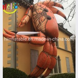 Les chiffres de la publicité gonflable géant de la plage de caractères de dessin animé le crabe