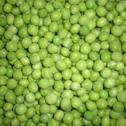 Bevroren Groene Erwt met Uitstekende kwaliteit