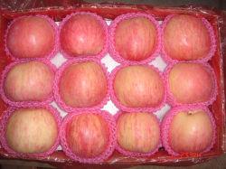 La Chine Sweet frais délicieux rouge/vert FUJI Star Qingguan Gloden Gala Apple avec plus d'Juicy Fruit