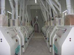 Hot vendre 200dpt moulin à farine de maïs au Kenya