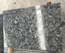 바닥용 블루 펄 그래나이트 및 화강암 타일