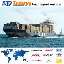 حاوية الشحن بحرية من الباب إلى الباب الشحن تخليص مزدوج مخصص من الصين إلى هولندا