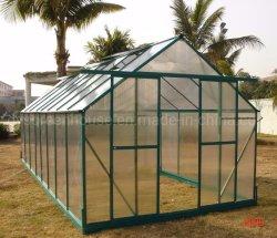 Serra del policarbonato del giardino di plastica trasparente dello strato per le verdure (RDGA0814-6mm)
