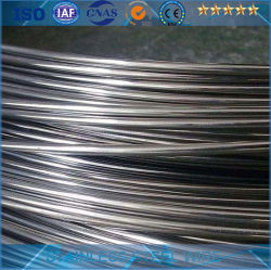Vergella laminato a caldo e temprato dell'acciaio inossidabile 304 e 316