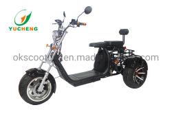 prix d'usine trois roues scooter de mobilité électrique avec le siège