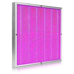 LED professionnel meilleur vendeur en gros d'usine Amazon 200W grandir la lumière