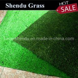 gras van het Gazon van het Gras van de Vrije tijd van 10mm het Synthetische voor de Decoratie van de Tuin