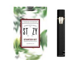 Pod Vape style stylo bouton de la cigarette électronique moins vaporisateur tout nouveau système Pod Pen E cigarette Kit vaporisateur Stiiizy Premium