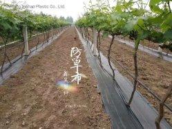 La hierba de material PP paño con resistencia UV