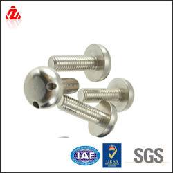 De aço inoxidável 316 Parafuso de segurança M10*12mm com dois orifícios na cabeça