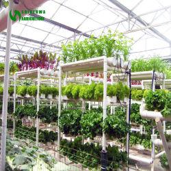 Tuyau de PVC système de la culture hydroponique Nft vertical pour vente et de la laitue/Strawberry/concombre