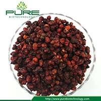 Сушеные ягоды Schisandra фрукты лекарственных трав