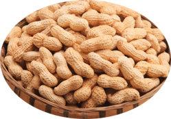 Amendoim torrado Inshell