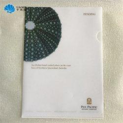 A4 van pp van pvc de Omslag van het Document van het Dossier van de l- Vorm