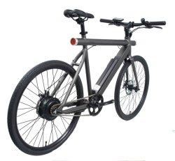 새 모델 36V 250W 산 전기 자전거 리튬 건전지 Eco 전기 자전거
