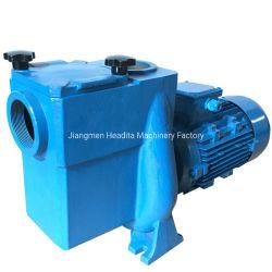 pompa ad acqua ad alta pressione del raggruppamento di sauna 5.5HP