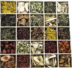 Extrait de plante naturel extrait de fines herbes et pour les aliments, boissons, les cosmétiques