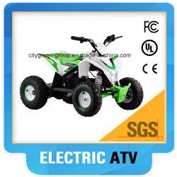 Elektrisches Quad 36V 1000W