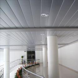 Túnel de tira falsa em forma de metal em forma de metal para interiores e exteriores Decorativo