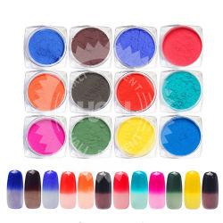 12jar/Set Thermochromic顔料熱カラー変更の温度の粉の塵の装飾の勾配の釘の芸術3Dはマニキュアのツールをひっくり返す