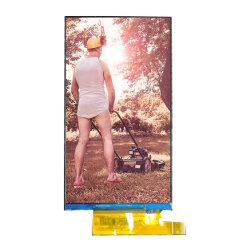 5インチ720*1280の解像度カスタマイズ可能なTFT LCDのモジュールLCDスクリーンのタッチ画面