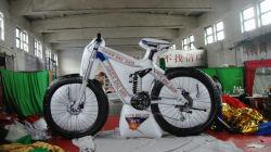 2019 جديدة خارجيّة كبيرة يعلن قابل للنفخ درّاجة نموذج