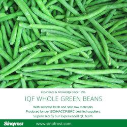 Toute IQF Haricots verts, de haricots verts entiers surgelés IQF Ensembles de haricots verts, de haricots verts congelés ensembles, les légumes IQF, les légumes surgelés, aliments congelés