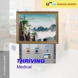 Hospital de alta calidad VIP Mural oculto de la unidad de cabecera (THR-BH002)