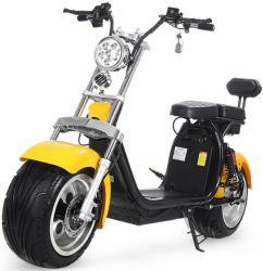 Harley Electric Dos baterías de carga de despegue de motocicletas Harley