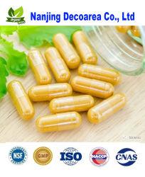 Extracto de hongo Chaga (cápsula de la salud alimentaria)