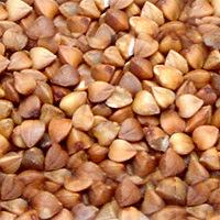 الأرز المشوي بالمشوي بالمشوي بقمح القمح المشوي بقمح مشوي