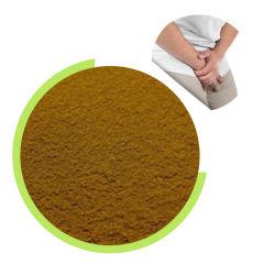 100% de alta qualidade extrato de Ervas Pygeum Africanum Extracto natural em pó