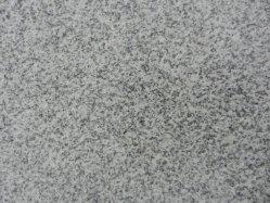 Gris clair G603 dalle de granit et de tuiles, de sa propre carrière de granit