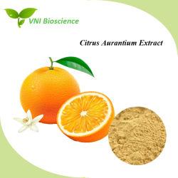 Производитель питания 100% натуральных цитрусовых Aurantium Extract для потери веса