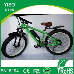 고성능 먼지 750W 48V 13ah Samsung 건전지를 가진 전기 지방질 E 자전거