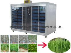 Granja utiliza sistema hidropónico forraje verde retoño crece la hierba verde de la máquina que hace la máquina