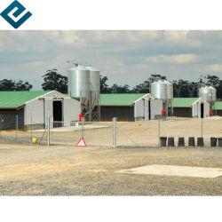 Faible coût des structures en acier léger à paroi fine pour l'atelier/Structure en acier tubulaire délestée