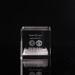 3D Laser 기념품 (KS13583)를 위한 수정같은 조각 플랜트 문진