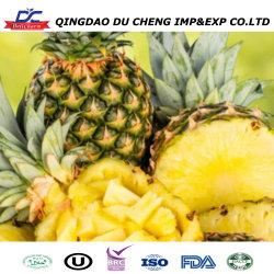 Hochwertige Gefrorene Ananas Leckerbissen Frucht.