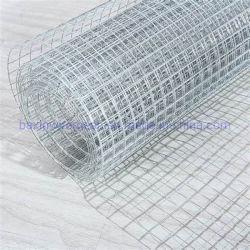 Boa qualidade de pano de Hardware soldados galvanizados Wire Mesh