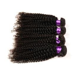 أسود طبيعي بالجملة 7A Brin Brazilian الشعر حزم ، Kinky تجعيد 100 الإنسان الشعر