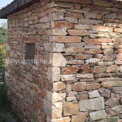 중국식 나무 황토색 성벽돌벽 더반의 나무