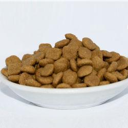 최고의 브랜드 OEM 위장관 저지방 PET Staple Foodadult Cat 그리고 새끼 고양이 음식