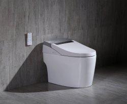 Très populaire chinois électrique WC WC