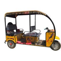 乗客のタクシーの販売のための緑の電池式の電気人力車の三輪車