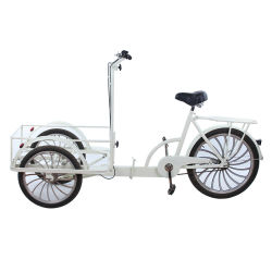 Asino poco costoso Trike della parte posteriore del triciclo del carico per il gelato/prima colazione Dq-06