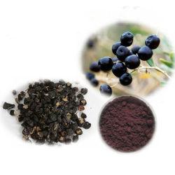 Qualität Reinheit des kosmetischer Raws schwarzer Goji Auszug-reine Puder-99%