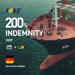Agens-Seefracht-Verschiffen-Kosten-Logistik-Service von Guangzhou China nach Japan/Australien/Frankreich